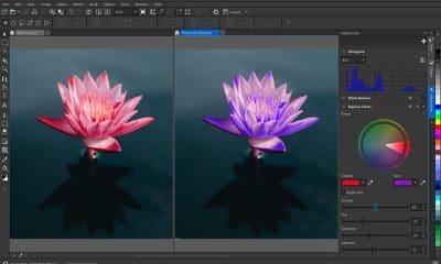 Corel-PHOTO-PAINT-2021-for-Windows-Replace-Colors